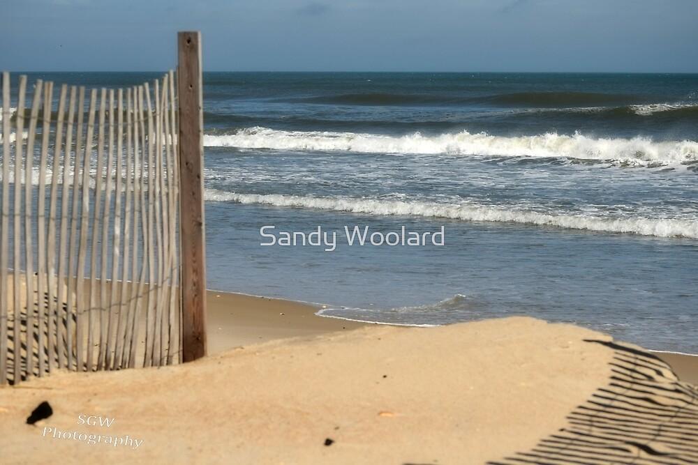 On the Island by Sandy Woolard