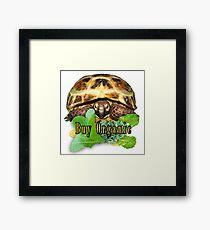 Tortoise - Buy Organic Framed Print
