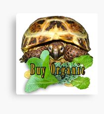 Tortoise - Buy Organic Canvas Print