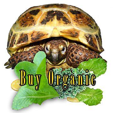 Tortoise - Buy Organic by LuckyTortoise