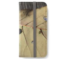 droplet iPhone Wallet/Case/Skin