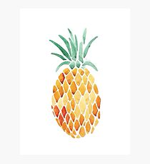 Pineapple Art Photographic Print