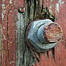 Rusty bolt on a wooden gate by Remo Kurka