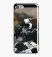 Cormorant @ Sculptures By The Sea 2011 iPhone Case/Skin