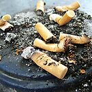 Smokers Paradise. Cigarette Buts... Don`t be shy, have one... by Remo Kurka