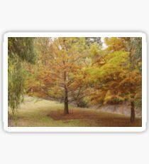 Swamp Cypress #3 Sticker
