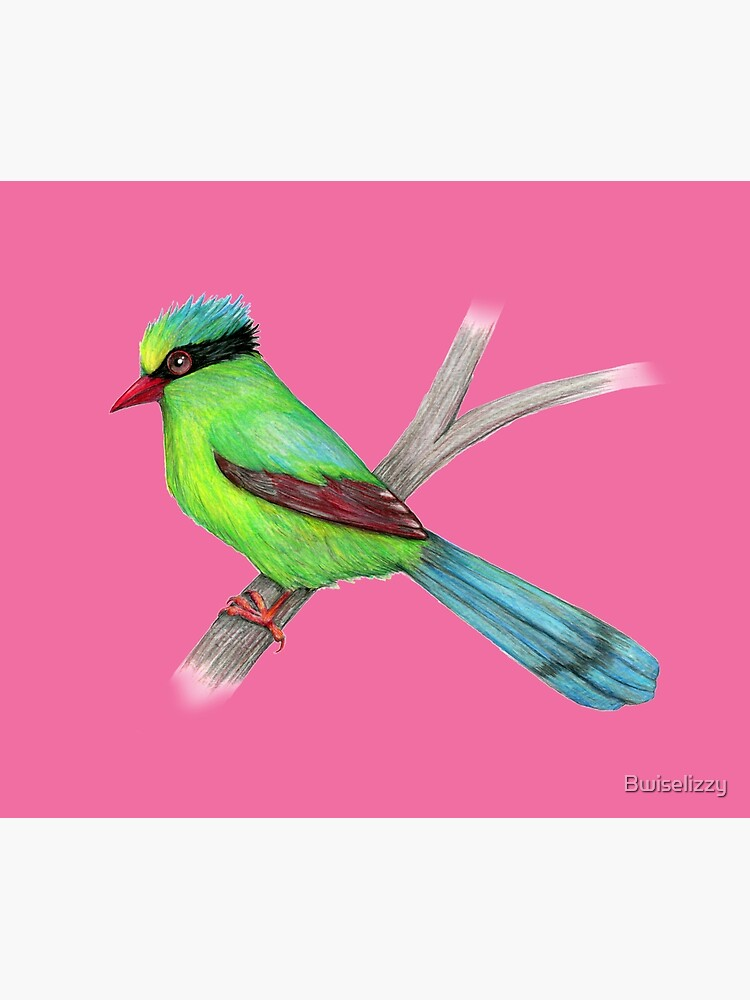 Green magpie pencil drawing by Bwiselizzy