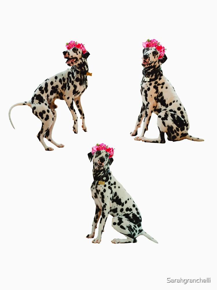 Dalmatian, flower crown by Sarahgranchelli