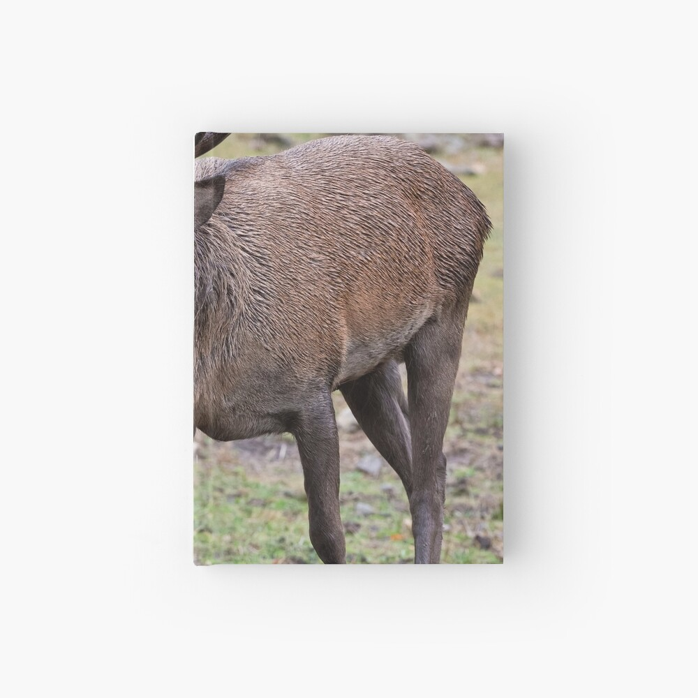 Red Deer Buck Hardcover Journal