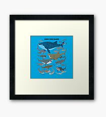 Know Your Sharks Framed Print