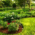 Lush Green Gardens - the Beauty of June by Georgia Mizuleva