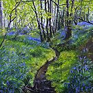 Bluebells and Brook by Paula Oakley