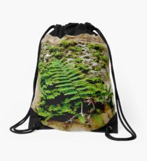 FERN VS. STONE MASONRY - FERN WINS Drawstring Bag