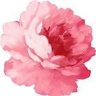 Flower pink peony by Olga Chetverikova