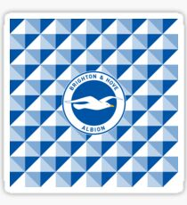 Brighton & Hove Albion football club Sticker