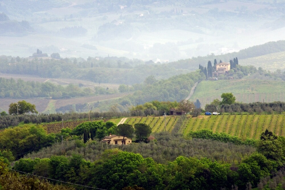 Misty Morning, Tuscany by Harry Oldmeadow