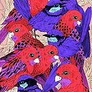 Wrens and Rosellas Delight! by Marta Tesoro