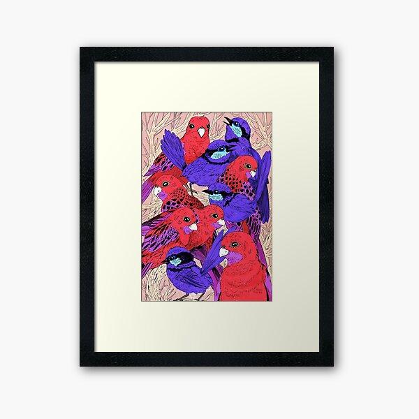 Wrens and Rosellas Delight! Framed Art Print