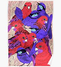 Wrens and Rosellas Delight! Poster