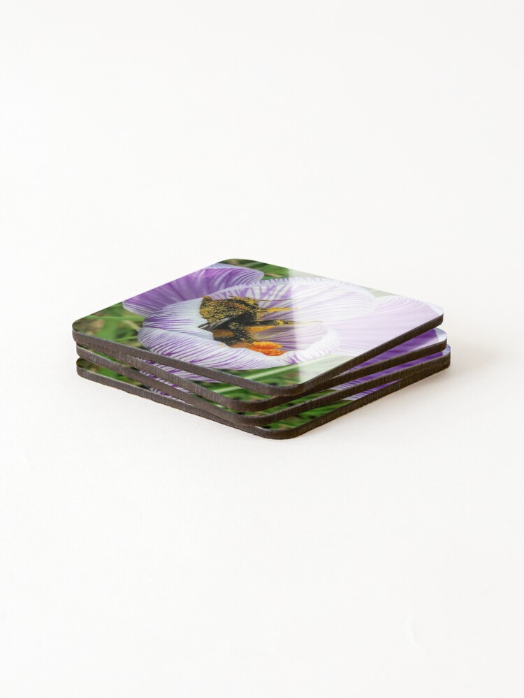 Alternate view of Bee 2 Coasters (Set of 4)