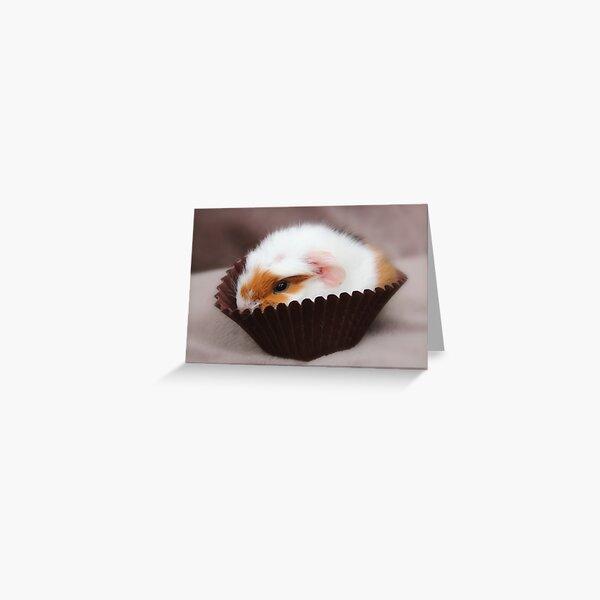 Meet Cupcake Greeting Card