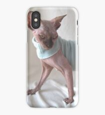 Choccolate sphynx cat whit light blue dress iPhone Case