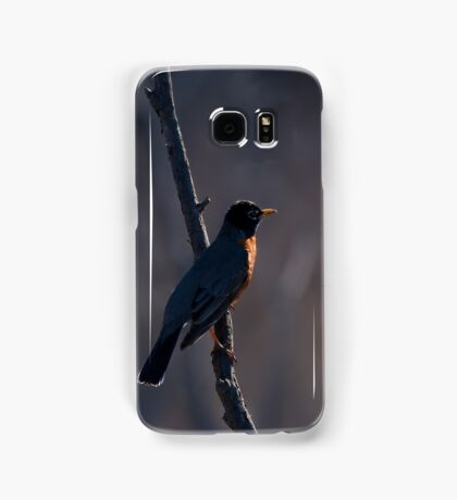 Signs of Spring - Robin Samsung Galaxy Case/Skin