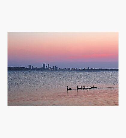 Swan River Perth Western Australia  Photographic Print