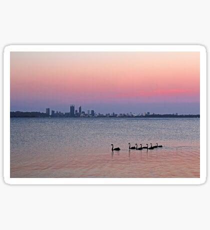 Swan River Perth Western Australia  Sticker