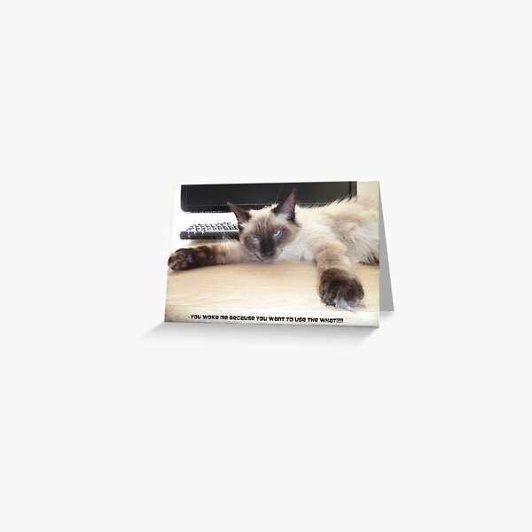 You Woke Me  Because You Want To Use The What? Greeting Card