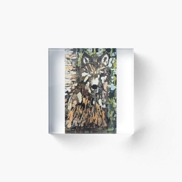 Haliburton Wolf Number 2 Acrylic Block