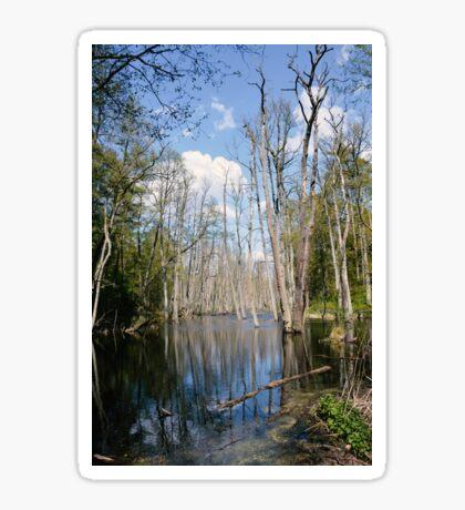 swampland Sticker