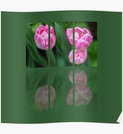 Three Tulips Triptych Poster