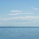 Sailboat at White Rock by Tamara Brandy