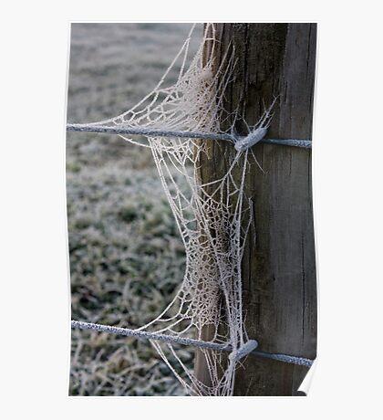 Frozen Web Poster