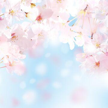 JAPAN SAKURA by ririe