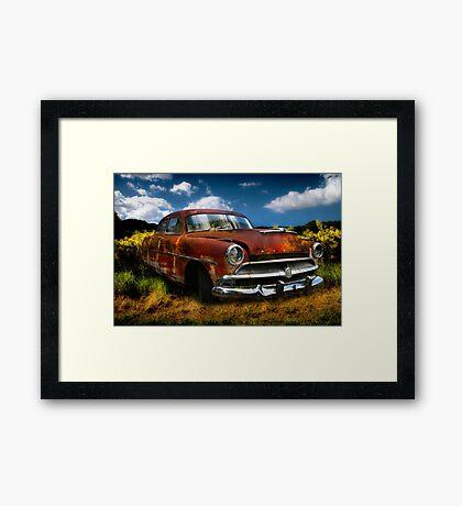 SuperWasp Framed Print