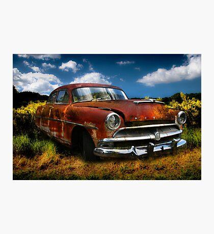 SuperWasp Photographic Print