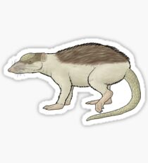 An ancient hedgehog, Pholidocercus Sticker