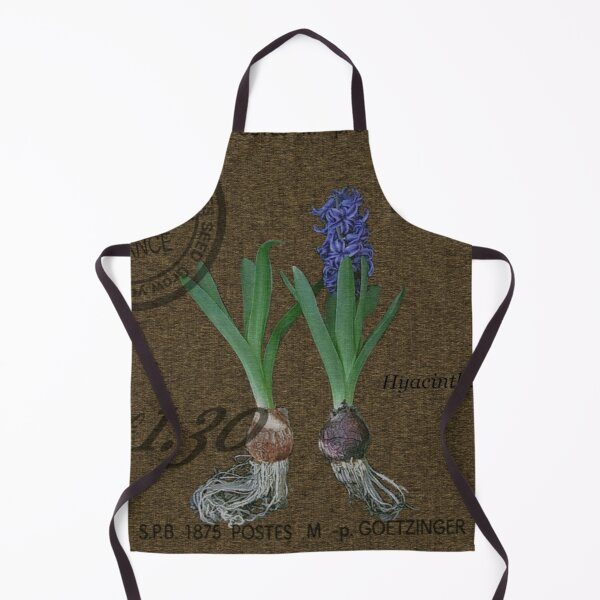 French country style of my Hyacinths. Apron