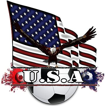 Patriotic USA Soccer Ball by futureimaging