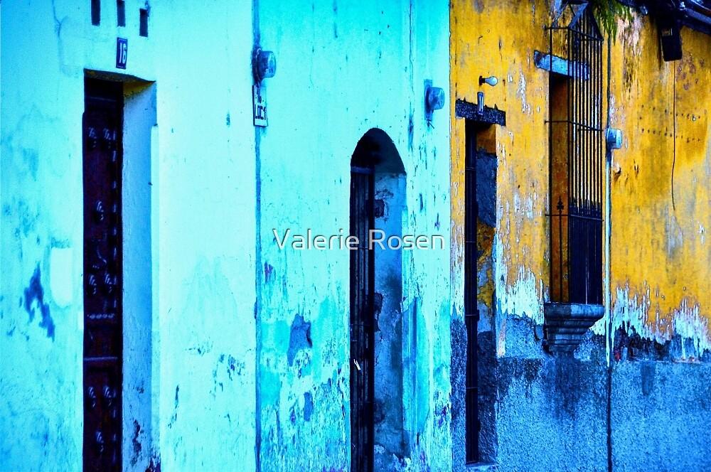Doors by Valerie Rosen