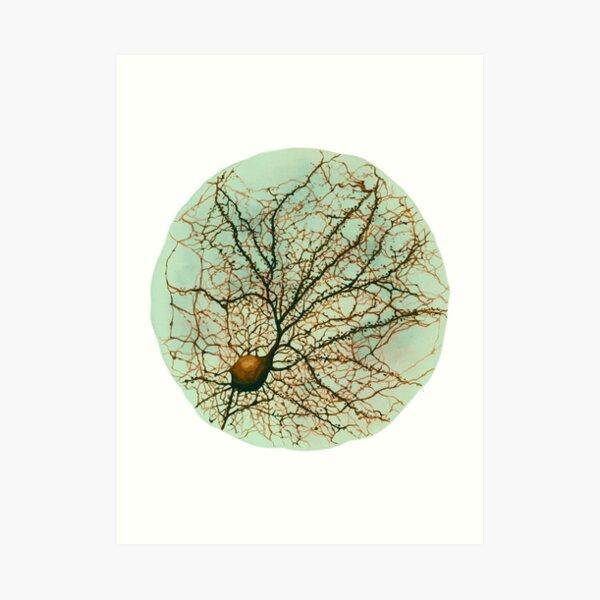 geeks de medicina y psicología por ahí!  Obra: representación de la neurona cultivada en el acuario.   Lámina artística