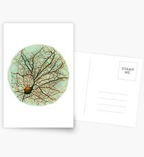 Dendritic tree and spines of an hippocampal neuron - watercolor - green Postcards