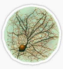 Dendritic tree and spines of an hippocampal neuron - watercolor - green Sticker