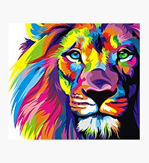 Lion Pride Photographic Print