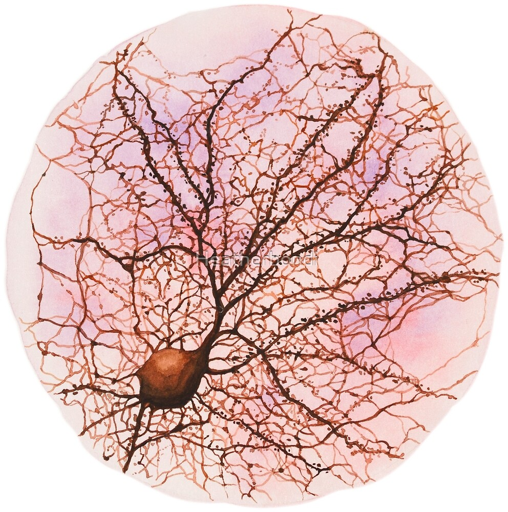 Dendritic tree and spines of an hippocampal neuron - watercolour - Pink by Heatherbondi