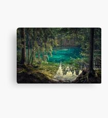 Turquoise spring Canvas Print