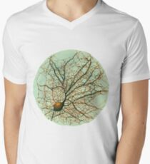 Dendritic tree and spines of an hippocampal neuron - watercolor - green Men's V-Neck T-Shirt