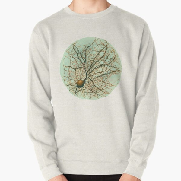 Dendritic tree and spines of an hippocampal neuron - watercolor - green Pullover Sweatshirt